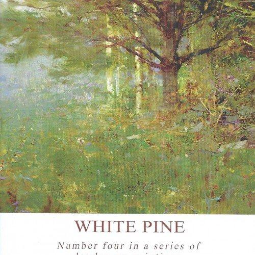 Richard Schmid Paints The Landscape - White Pine