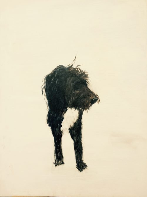 London Fine Art Studios | Jane Villiers