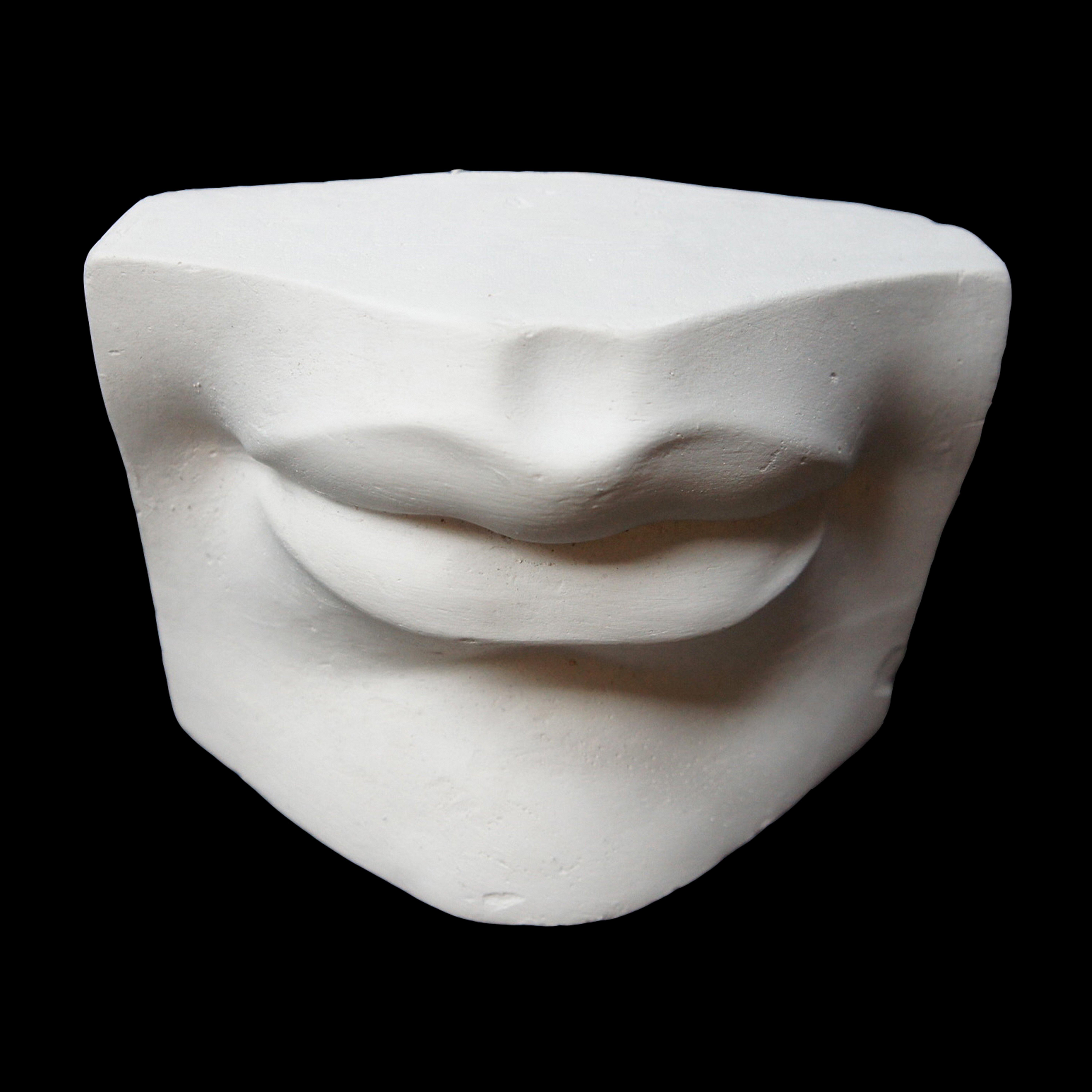 Plaster Casts David S Lips London Art Shop Buy Art